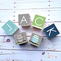 Personalised Wooden Letter Name Blocks Boy Nursery Decor Owls