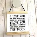 Hanging Pendant Print Scroll Sign Nursery Boys Love to Moon