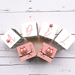 Personalised Wooden Letter Name Blocks Girls Vintage Pink Owl